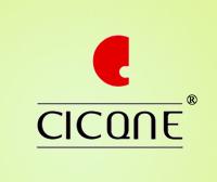 CCICQNE