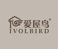 爱屋鸟-IVOLBIRD