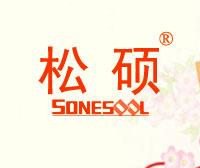 松硕-SONESOOL