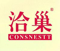 洽巢-CONSNESTT