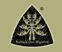 NORTHERN DEER MIGRATION