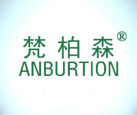 梵柏森-ANBURTION V